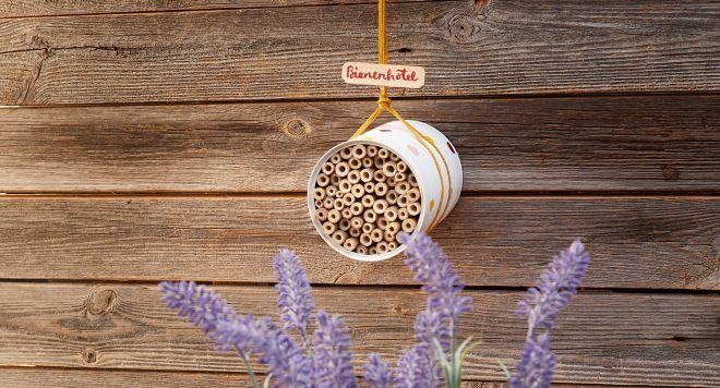 Hängt euer Insektenhotel an einer Stelle auf, wo es möglichst vor Nässe geschützt ist. Bild: REWE Group