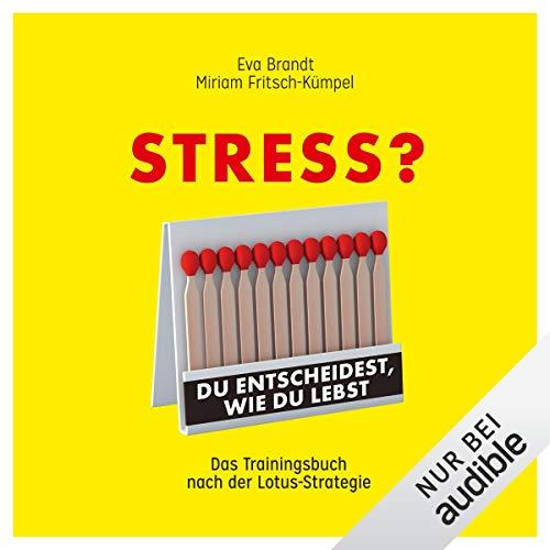 Hörbücher, dank denen ihr Stress mit neuen Augen seht